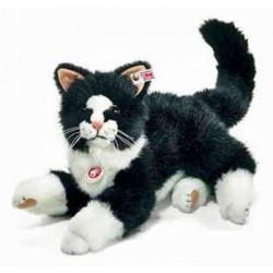 Koko le chat
