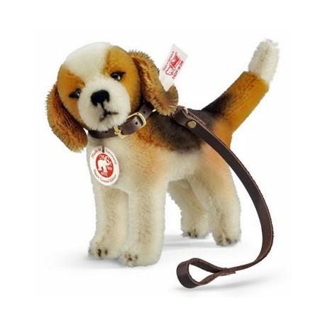 Biggie beagle