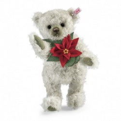 Poinsettia teddy